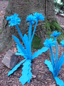 Blue Dandelions